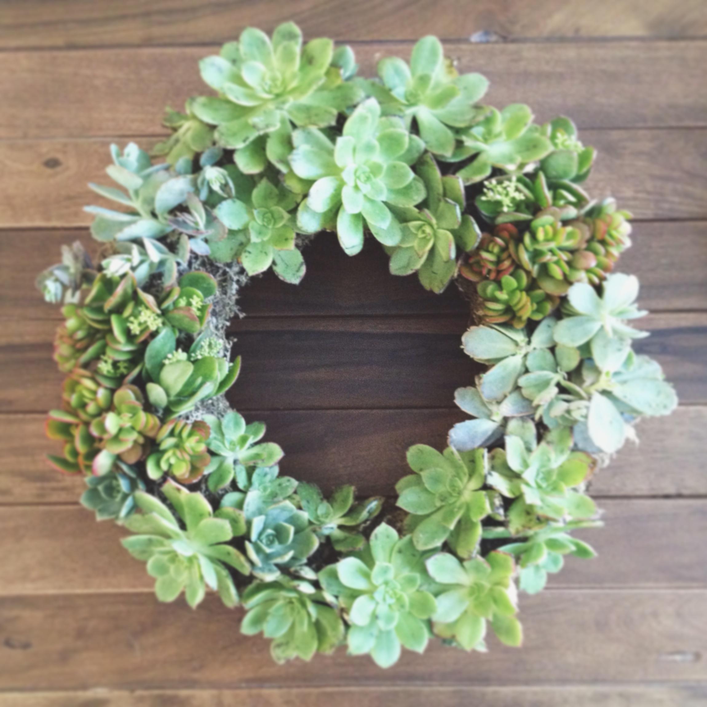 Garden Inspired Spring Succulent Wreaths Arrow Sage